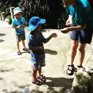 SeaWorld's waterpark, Aquatica, has an aviary. Zack's getting a cup of bird food.