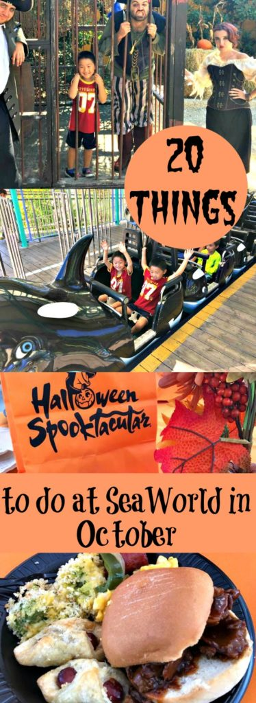 20 things to do at SeaWorld in October Ripped Jeans and Bifocals
