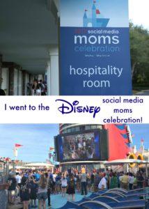 I went to the Disney Social Media Moms Celebration Small Pin
