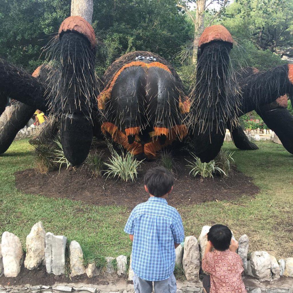 5 Reasons To Check Out Bug Mania At The San Antonio Zoo