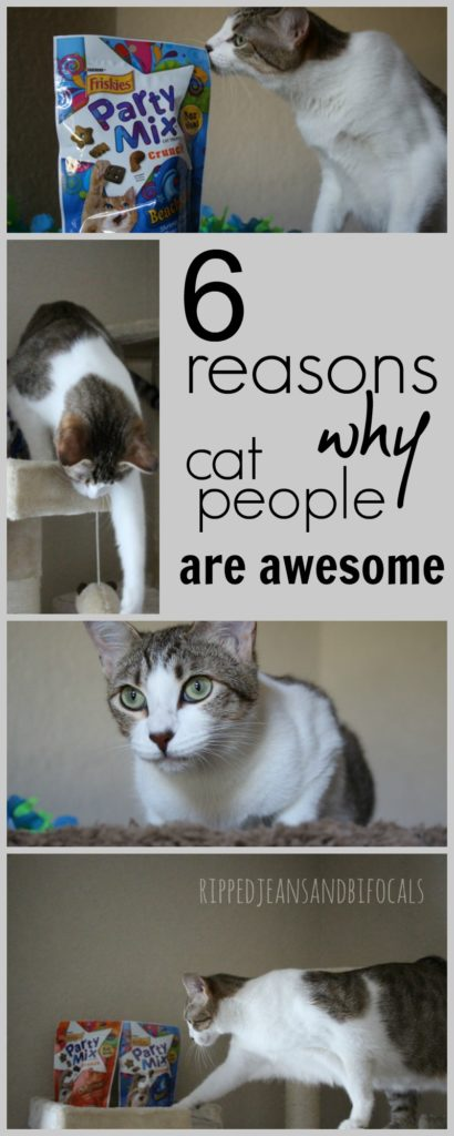 Six reasons why cat people are awesome|Ripped Jeans and Bifocals