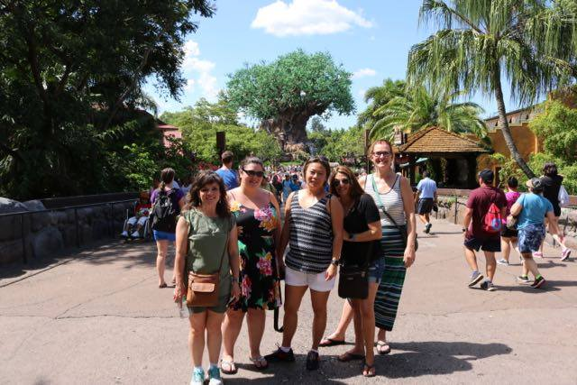 6 Reasons to to Disney without kids|Ripped Jeans and Bifocals