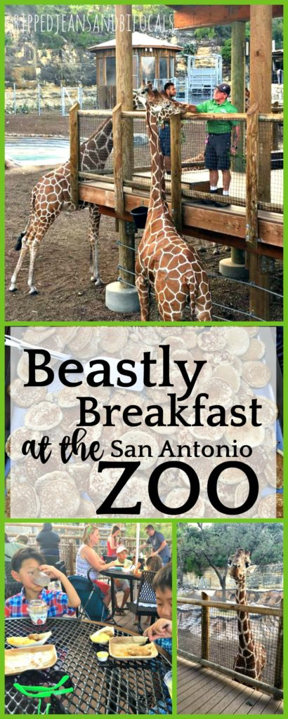 Beastly Breakfast at the San Antonio Zoo|Ripped Jeans and Bifocals