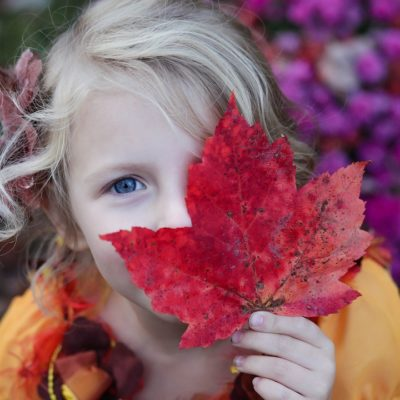 Fun ideas for your fall family bucket list