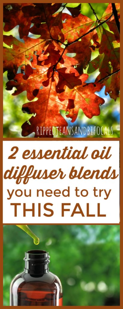 If you love fall smells as much as I do, check out these two essential oil diffuser blends for fall. Guaranteed to put you in the mood for fall!|Ripped Jeans and Bifocals