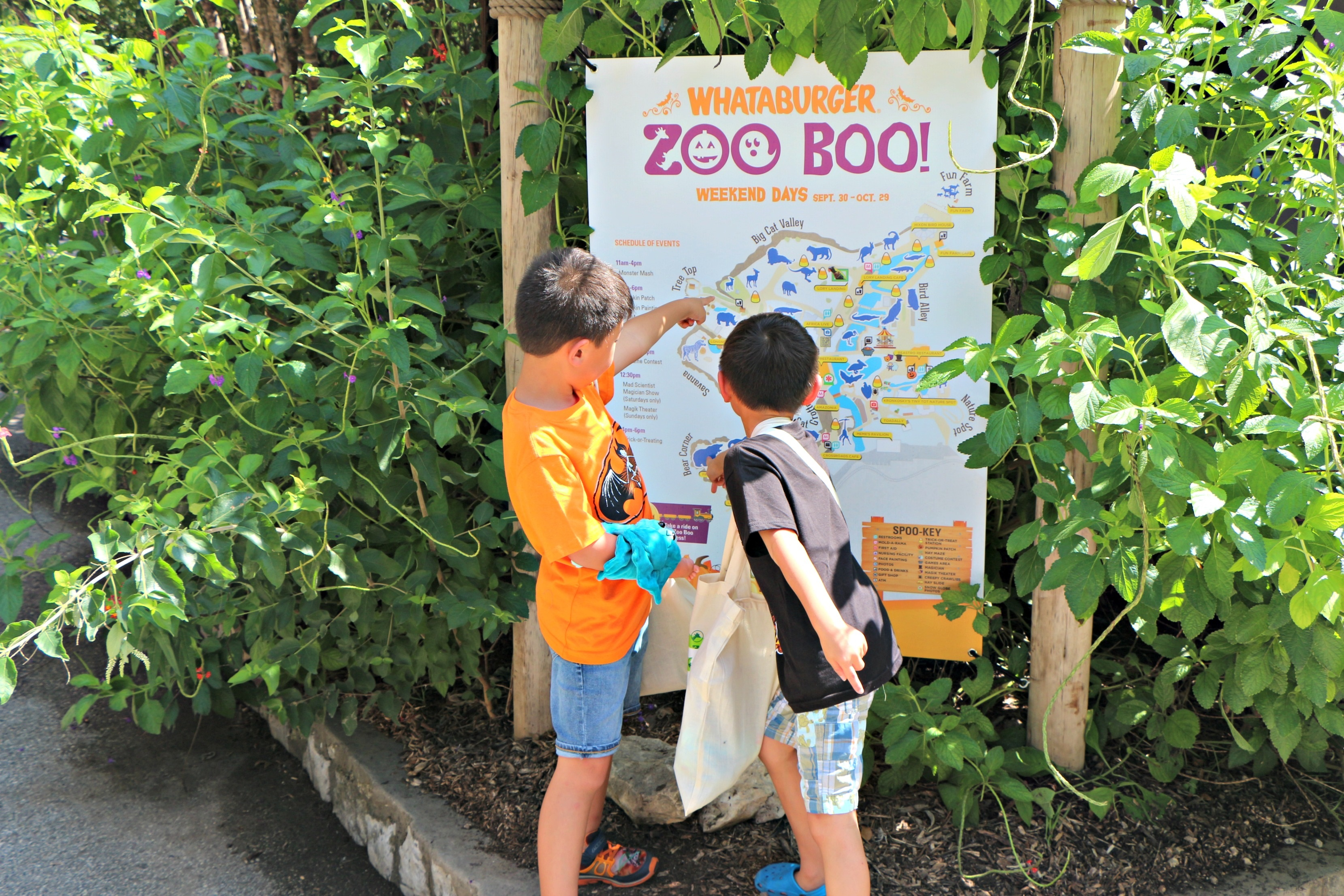 Reasons to check out Zoo Boo at the San Antonio Zoo|Ripped Jeans and Bifocals