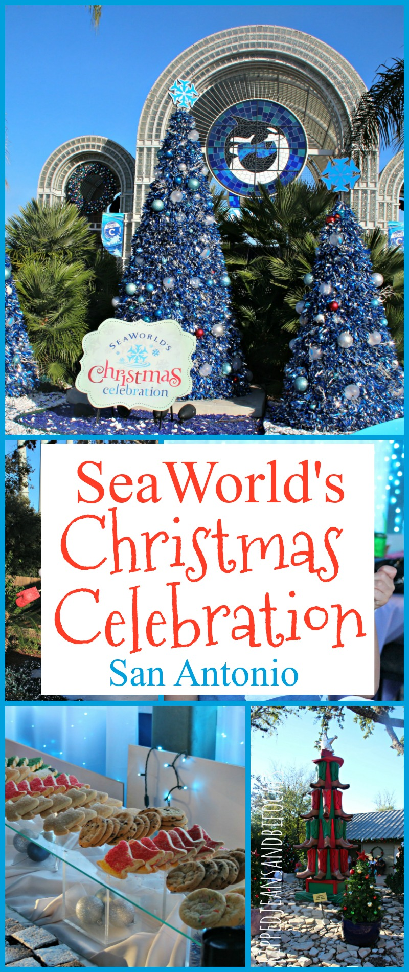 Sea World's Christmas Celebration in San Antonio|Ripped Jeans and Bifocals