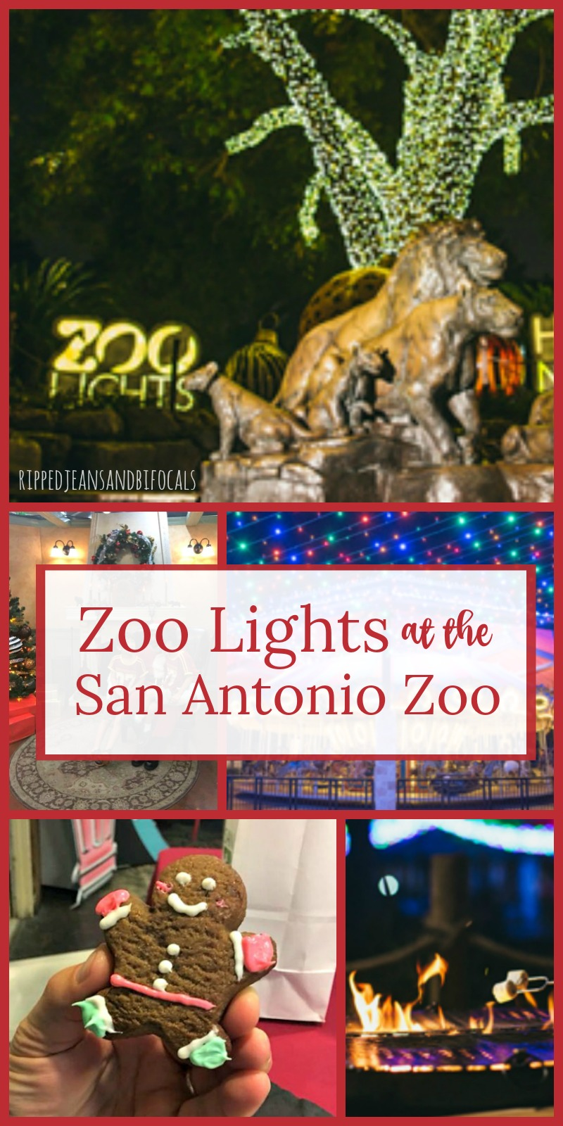 Zoo Lights at the San Antonio Zoo 2017|Ripped Jeans and Bifocals