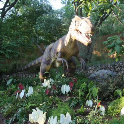 Zoorassic Park and other summer fun at the San Antonio Zoo