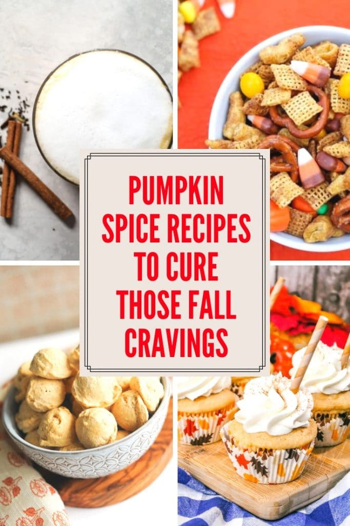 Pumpkin Spice Recipes to Complete your Fall Cravings
