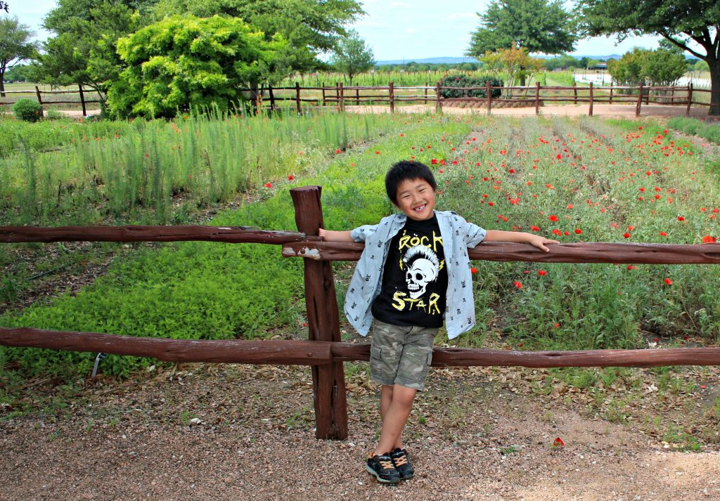 There are lots of things to do with kids in Fredericksburg Texas