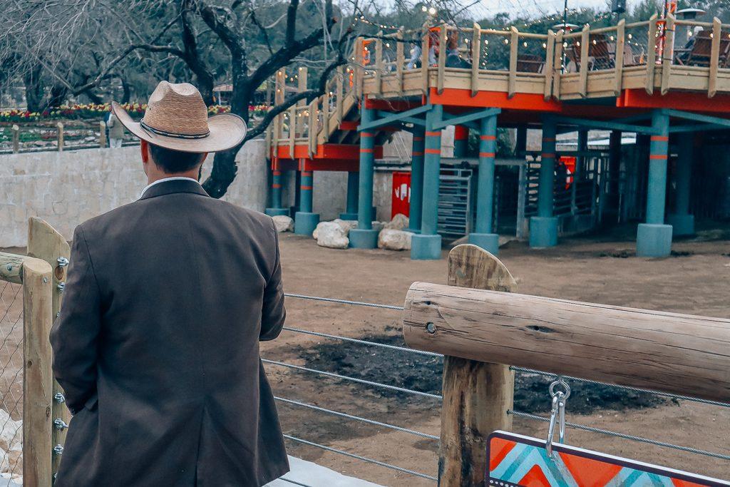 The San Antonio Zoo welcomes two new rhinos Handsome man overlooking savanna at San Antonio Zoo