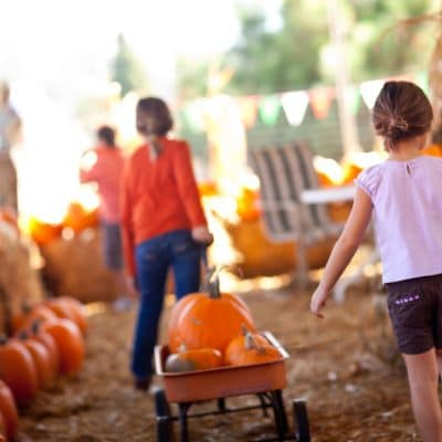 Tips for Visiting Texas Pumpkin Patches with Kids