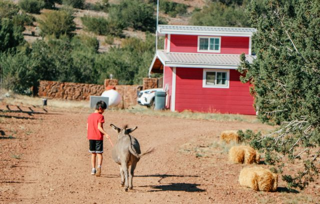 Boy in red shirt at Wasserman Wranch in West Texas