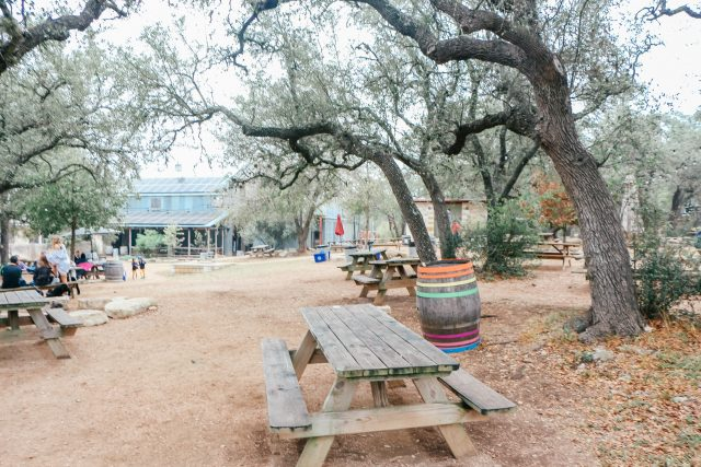 beer garden at Jester King Brewery